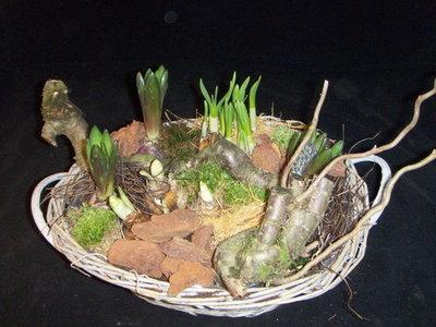 rieten mand met voorjaar